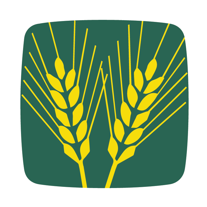 búza blé wheat icon