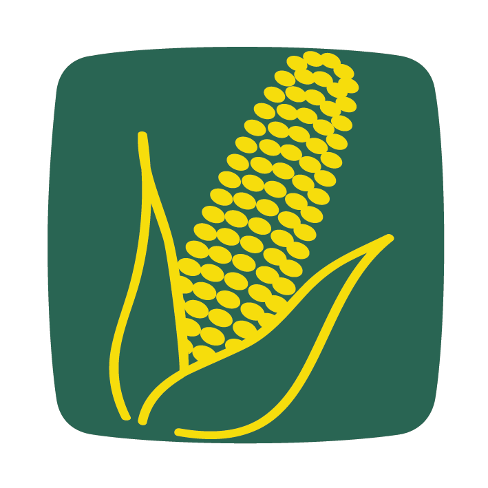 kukorica hibridkukorica mais maize corn icon